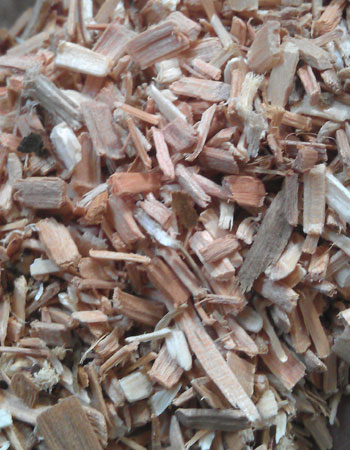 wood chips: raw material for making wood pellets