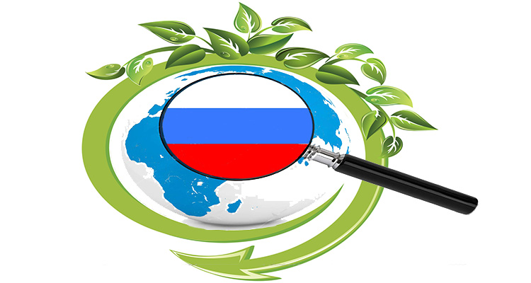 Russia biomass energy analysis