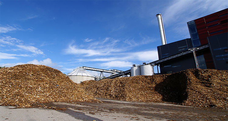 agriculture waste to make wood pellet