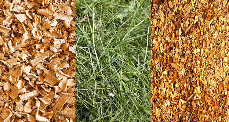 raw materials for wood pellet