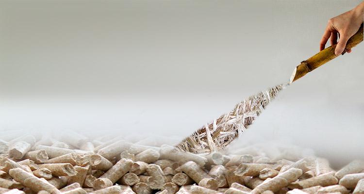 use sugarcane bagasse to make pellets