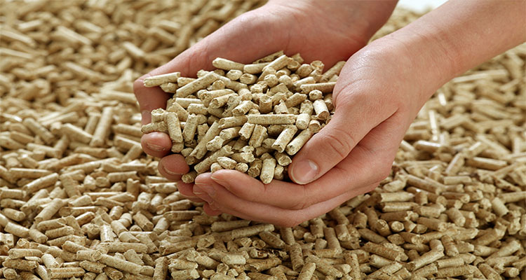 a picture of wood pellet