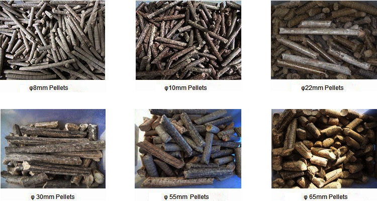 a picture of wood pellets with different diameters