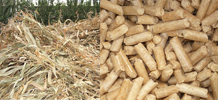 the biomass pellet made from corn stalk