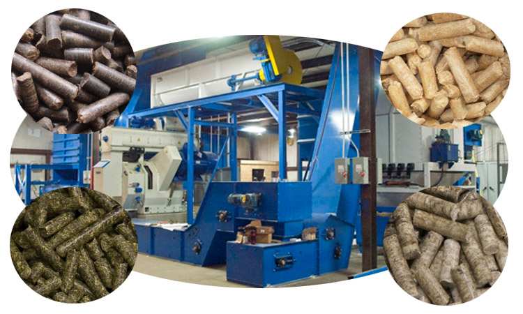 a picture of biomass pelletizing plant