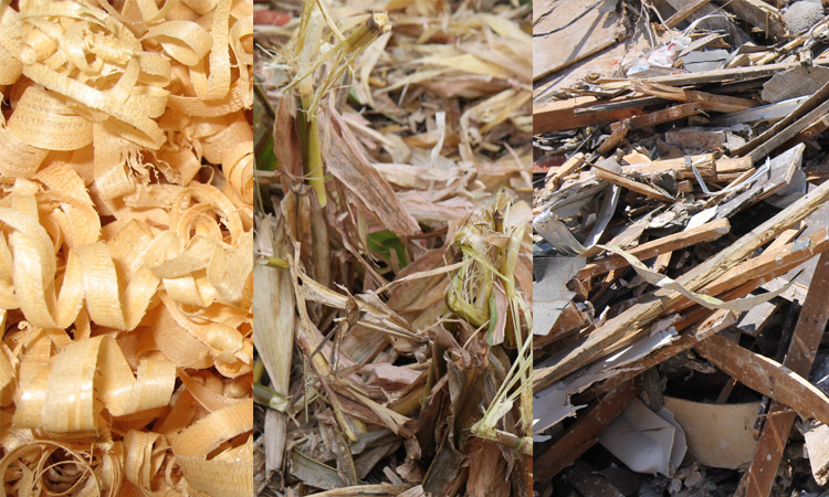 a picture of biomass materials