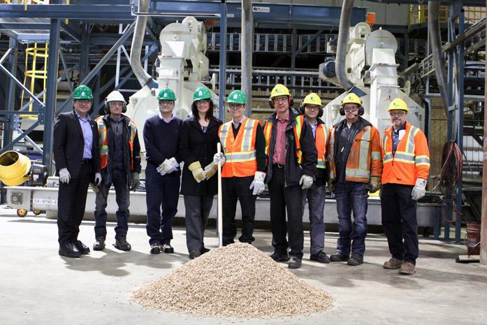 workers in wood pellet plant