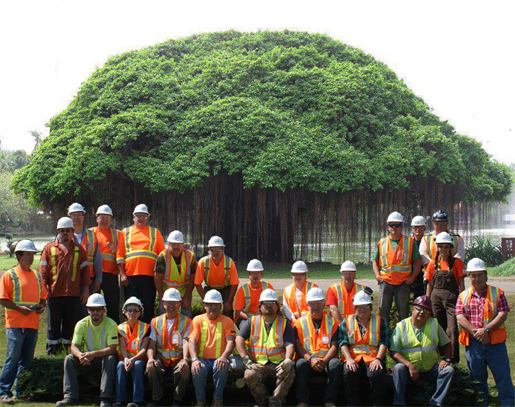 a picture of the staffs in a wood pellet plant