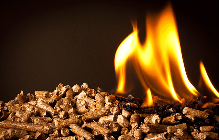 a picture of burning biomass pellets