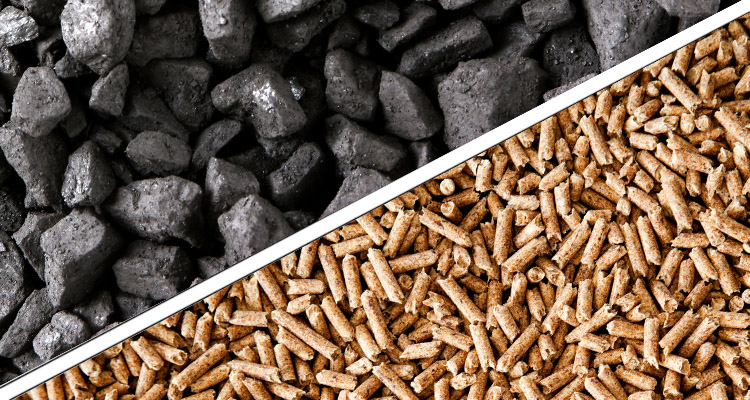 a picture of biomass pellets and coal