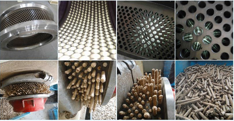 a picture of ring die and wood pellet