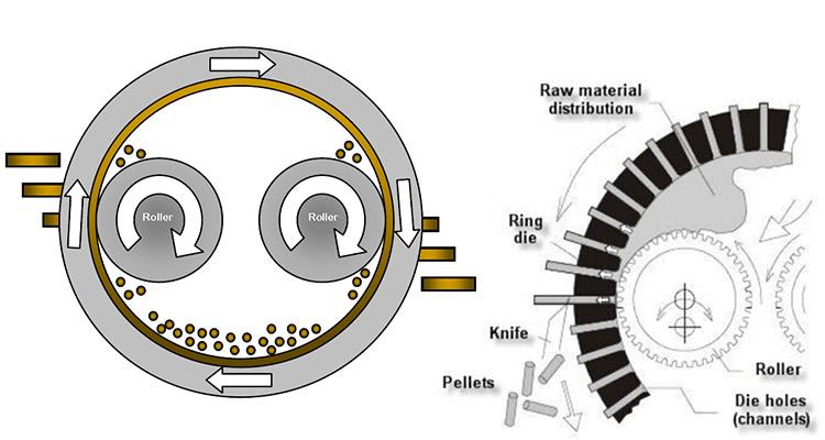 the working principle of pellet mill ring die