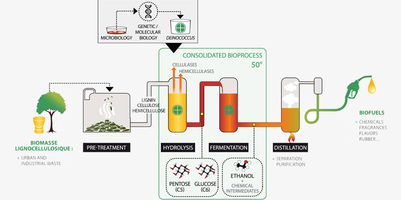 a picture of bioethanol extraction process