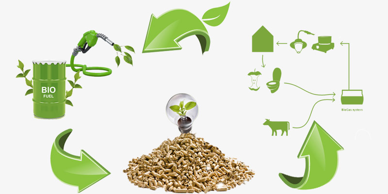 different types of biomass fuels
