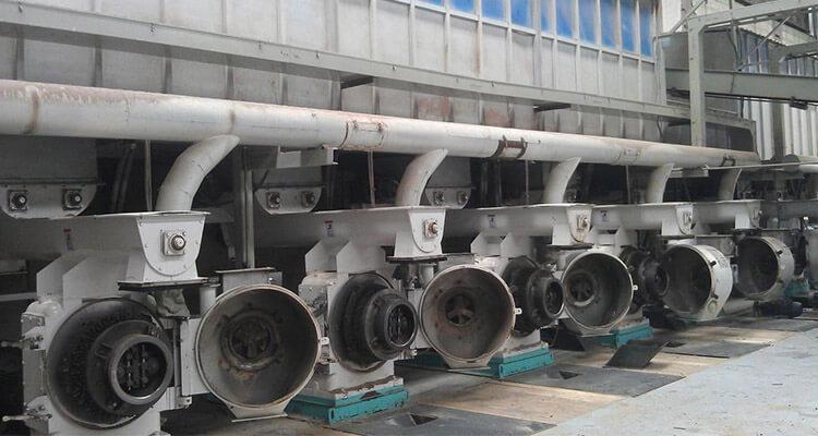 large pellet machines in pellet plant